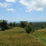 bali land for sale cheap