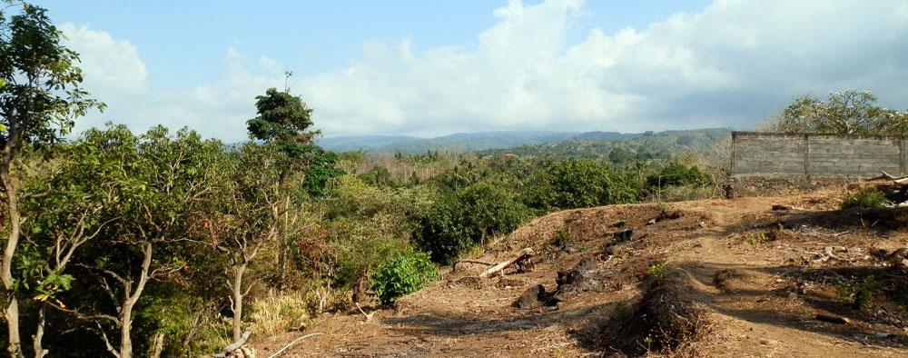 lovina land for sale