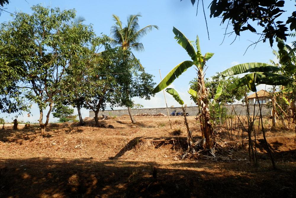 Lovina Land for sale – North Bali, Lovina terraced hillside land with ocean view
