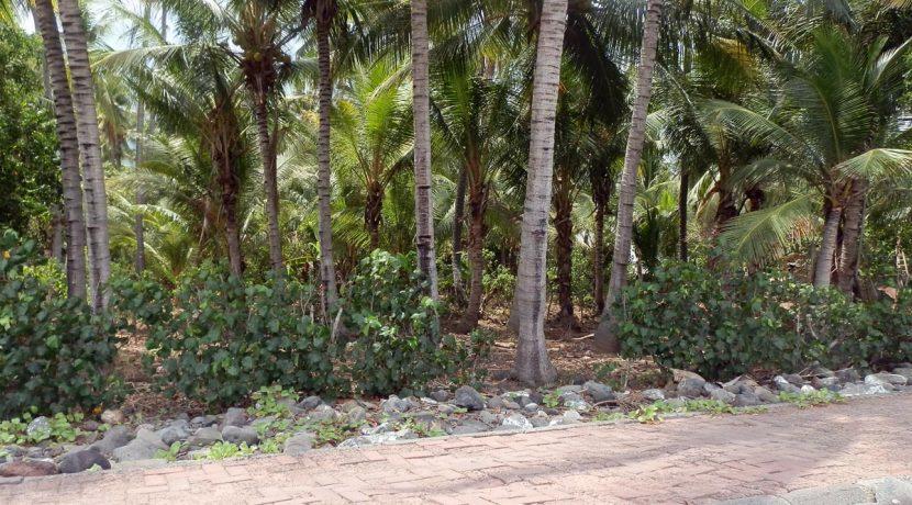 north-bali-seafront-land-4