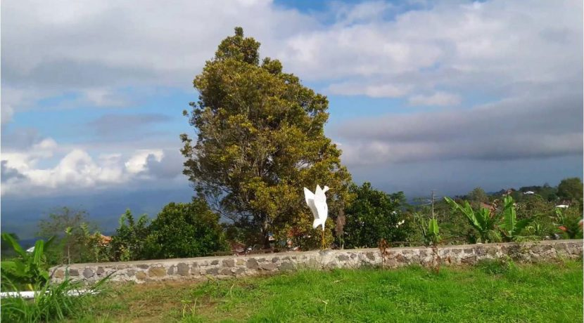 bali-mountain-land-for-sale-22