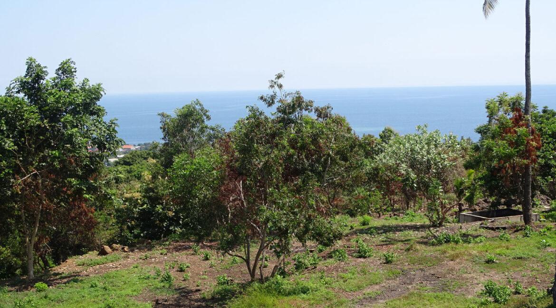 north-bali-hillside-sea-view-land-sale-10