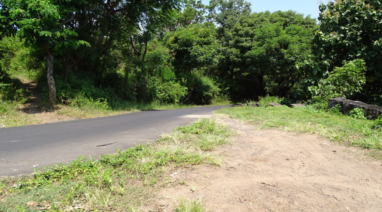 north-bali-hillside-sea-view-land-sale-road