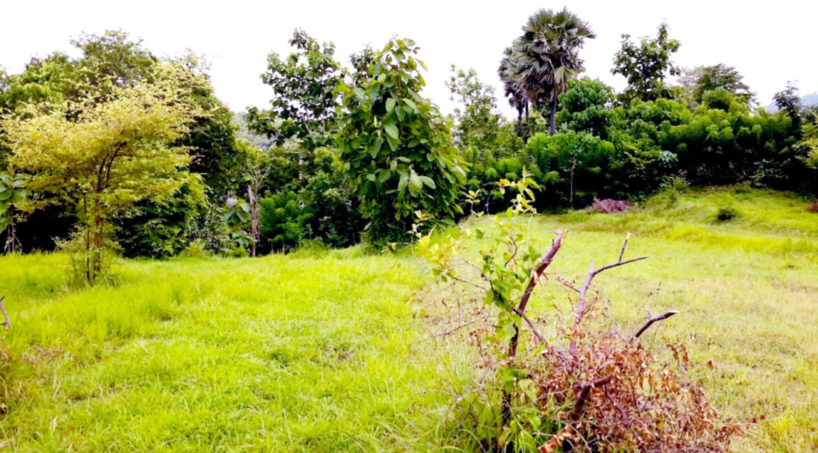 north-west-bali-land-for-sale-14