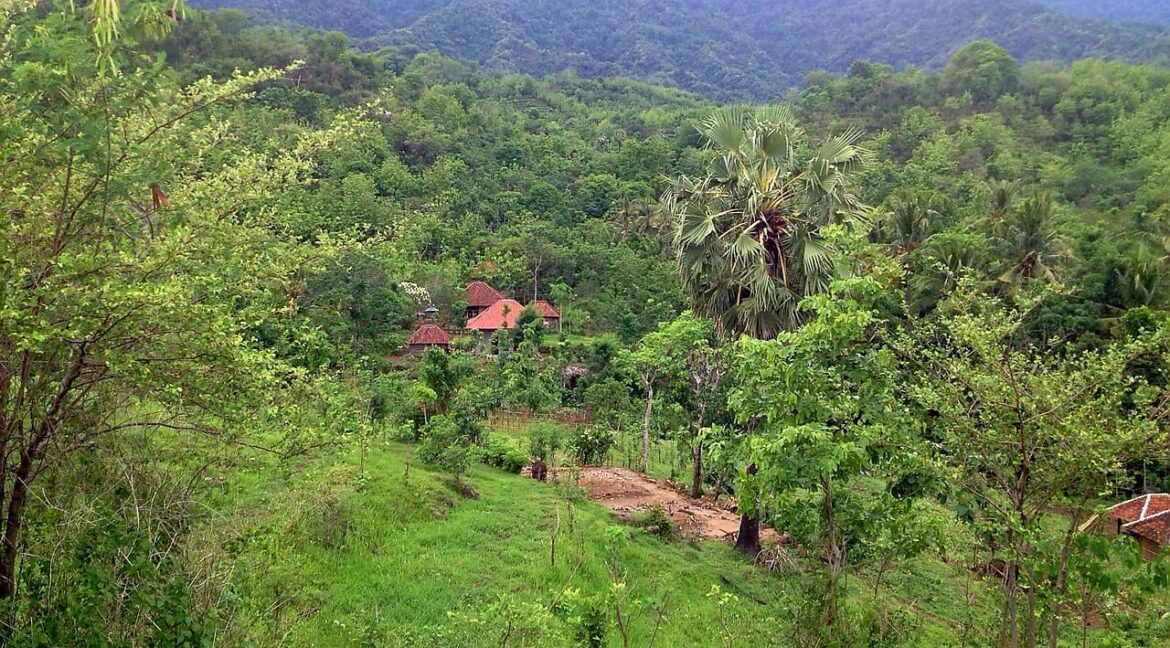 north-west-bali-land-for-sale-3