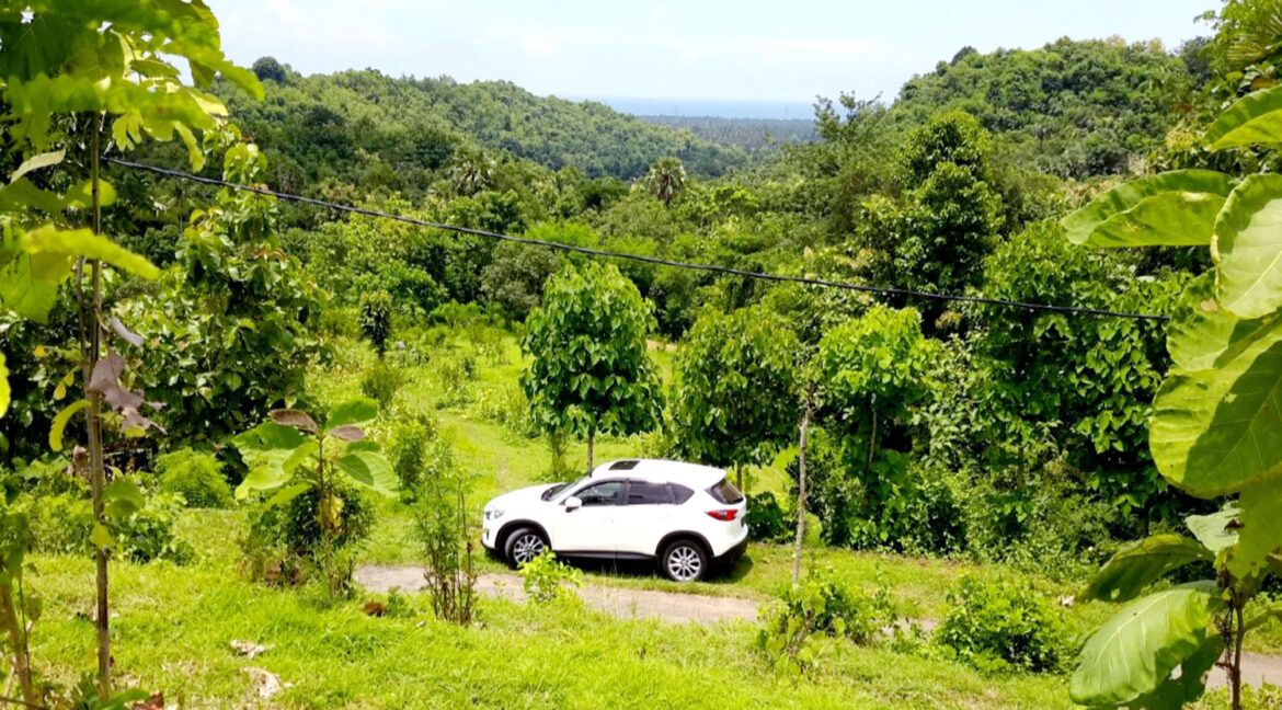 north-west-bali-land-for-sale-5